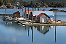 Halibut Cove - Homer