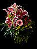 4. Platz 'Lass Blumen sprechen' von Wolfgang Koston