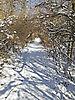 Winter_Weg